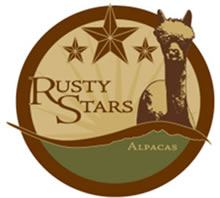 Rusty Stars Farms - Alpacas